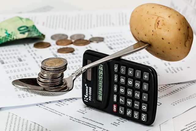 vyvážení rozpočtu