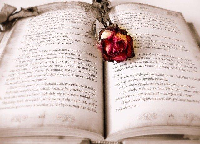 book-419589_64