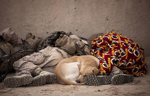odpočinek vojáků