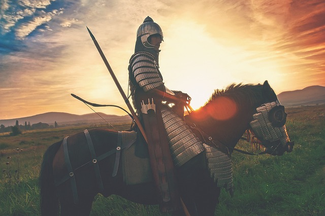 bojovník